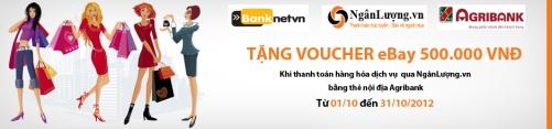 Banner Banknet - Agribank - NL edit